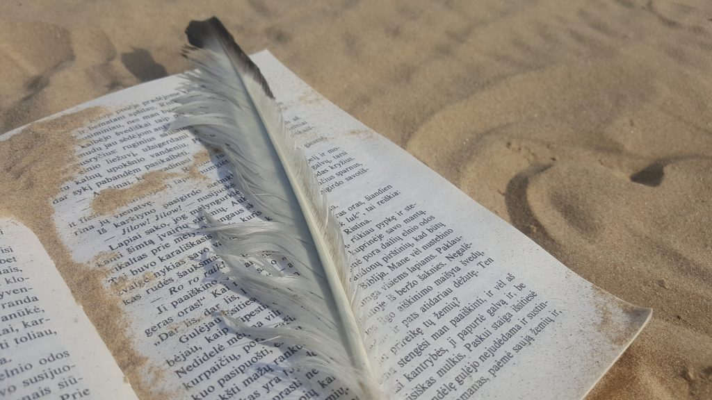 Knyga smėlyje